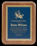 Plaque with Diamond Plate Award Sales Awards