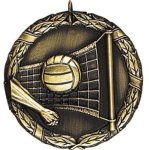 Volleyball XR Series Medal Awards